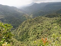 Riviere noire - Maurice by <b>brussels100</b> ( a Panoramio image )