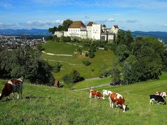 KGS 0159 A, SCHLOSS LENZBURG mit Kuhen by <b>Wilhelm Tell</b> ( a Panoramio image )
